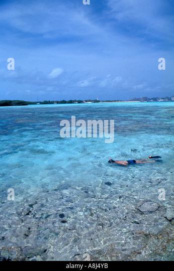 Los Roques Archipelago Venezuela snorkeling Francisquí Cay cayo - Stock Image