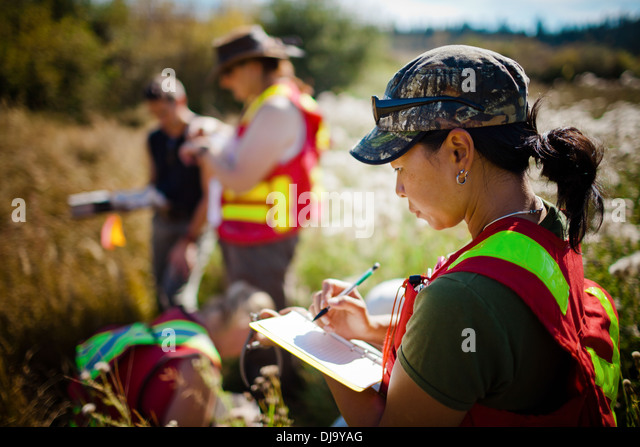 Field Research - Stock Image