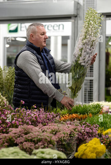 EDITORIAL USE ONLY Flower trader John Hardcastle prepares blooms at the Flower Market at New Covent Garden Market - Stock Image