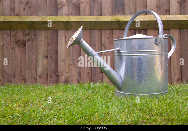 Glavanised steel watering on grass in the garden - Stock Image