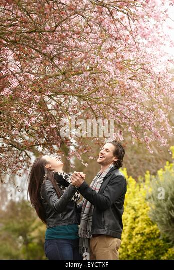 Young couple dancing under blossom in park - Stock-Bilder