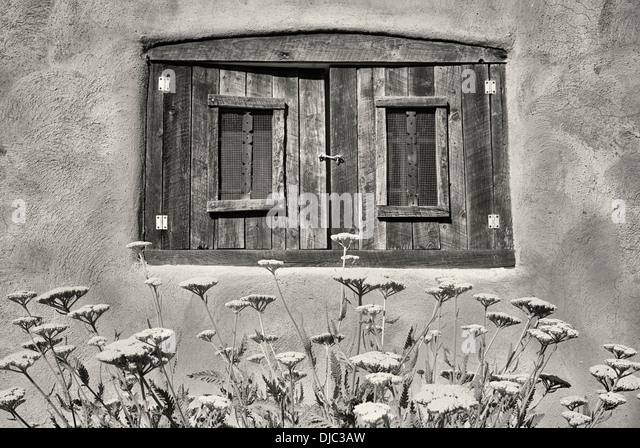 Yarrow flowers in garden with historic window in adobe house. Taos, New Mexico. - Stock Image