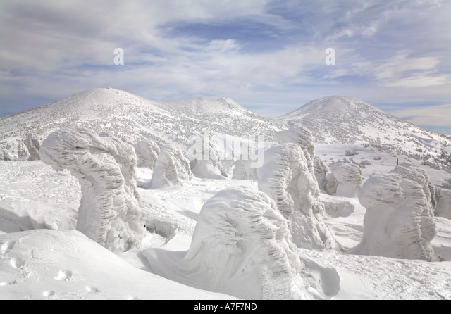 Snow Monsters - Trees with snow frozen on to them in winter Mount Hakkoda Japan - Stock Image