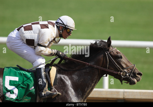 Jockey winning race at Colonial Downs racetrack in New Kent County, Virginia. July 2010 - Stock Image