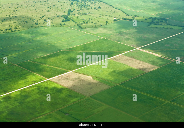 Aerial shot over fields, Dominican Republic - Stock Image