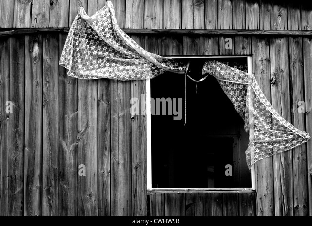 window - Stock Image