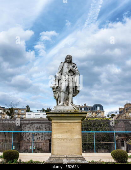 Daubenton stock photos daubenton stock images alamy for Bois de boulogne jardin d acclimatation