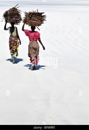 Kenya Mombasa. Women carry on their heads makuti (dried coconut palm fronds used as roofing material) on Kenya s - Stock Image