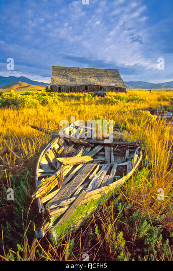 Old Wooden boat and rustic old wooden barn in golden sage brush and blue sky. Camas Prairie, near Fairfield, Idaho, - Stock Image