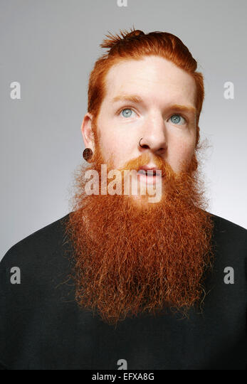 Studio portrait of young man with blue eyes, red hair and overgrown beard - Stock Image