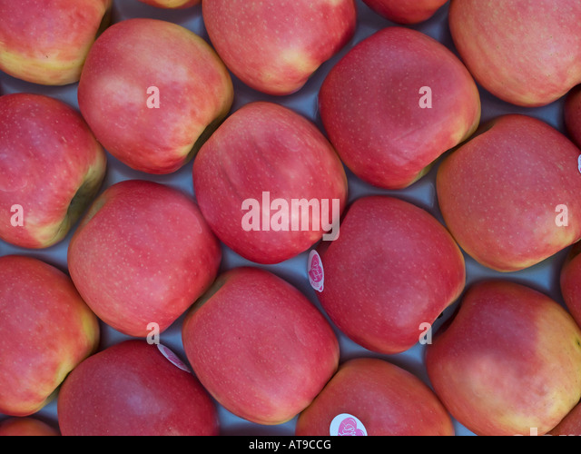 apples sort of Pink Lady for sale - Stock Image