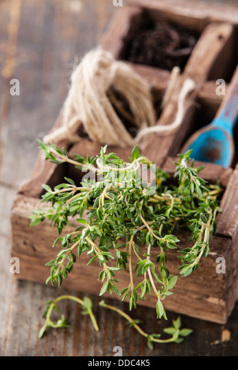 Bunch of fresh thyme in wooden box - Stock Image