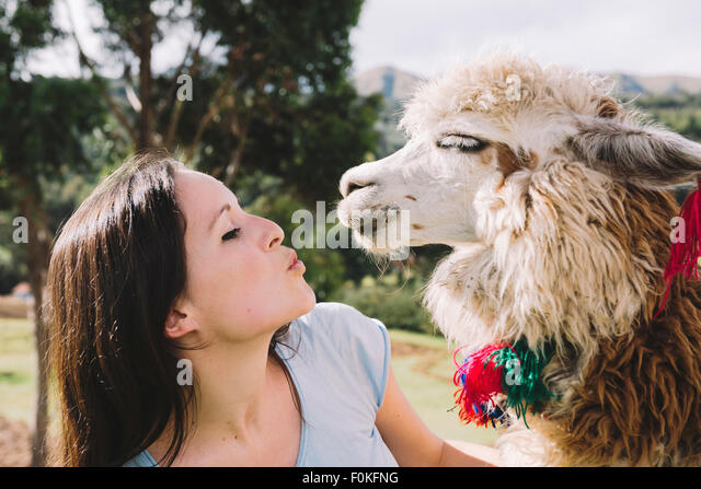 Peru, Cusco, young woman face to face to an alpaca - Stock Image