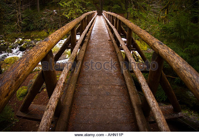 Bridge spanning forest river - Stock-Bilder