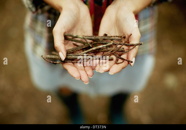 small bunch of twigs kindling for the camp fire - Stock Image