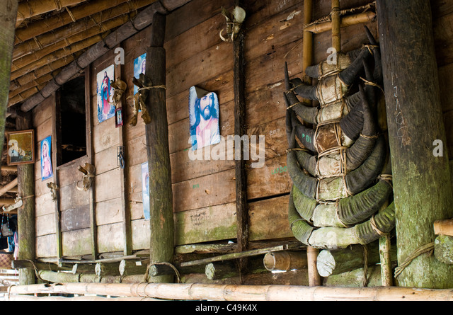 Traditional Buffalo Stock Photos & Traditional Buffalo ... Horns Inda House
