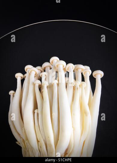 Enoki mushrooms on a black plate. - Stock Image