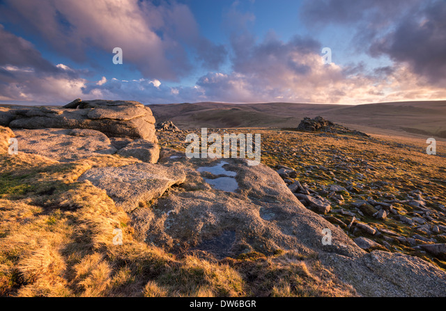 Rich evening sunlight bathes the moorland at Higher Tor in Dartmoor National Park, Devon, England. Winter (February) - Stock Image