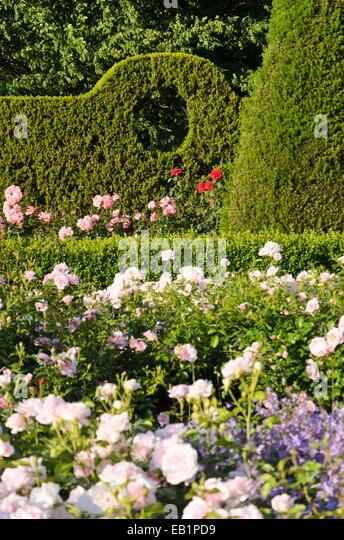 clipped garden hedge stock photos clipped garden hedge stock images alamy. Black Bedroom Furniture Sets. Home Design Ideas