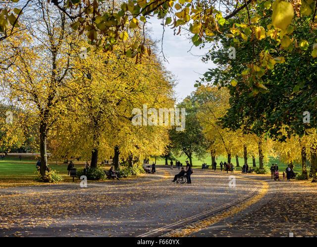 Public park in Greenwich Village, London UK - Stock Image