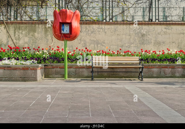 Tulip shaped public phone and wooden bench in front of built-in tulip flower box and grunge wall on tiled stone - Stock Image