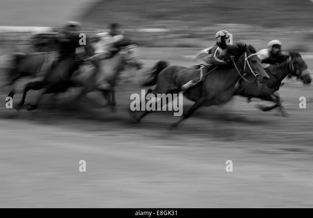 Indonesia, West Nusa Tenggara, Kabupaten Lombok Tengah, Kuta, Traditional Lombok horse race - Stock Image