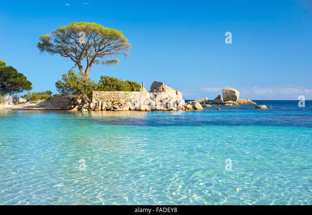 Palombaggia Beach, Porto-Vecchio, East Coast of Corsica Island, France - Stock Image
