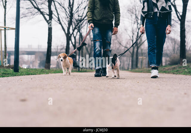 Low section of young couple posing outdoor with dogs on a leash smiling - friendship, everyday life, happiness concept - Stock-Bilder