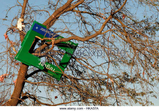 A gas sign from a gas station sits in a tree nearby after a tornado ripped through the area on Sunday in Albany, - Stock Image