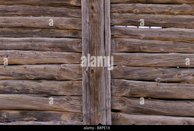 drop-log wall construction, outback Australia - Stock Image