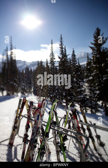 Skis all racked up at Alta Ski Resort. - Stock-Bilder