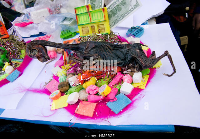 dried llama fetus on a mesa in the Witches Market in La Paz, for use in sacrifices to the Pachamama, mother earth - Stock Image