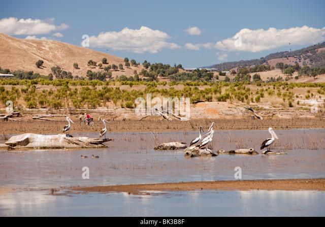 Drought at Lake Eildon, Bonnie Doon, Australia. - Stock Image