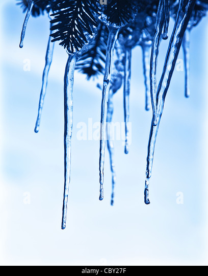 Icicles on the tree branch, blue frozen water, winter ice, weather outdoor at wintertime season - Stock-Bilder