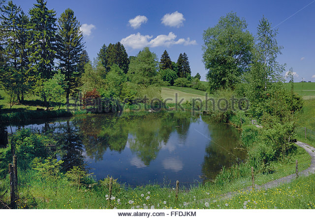 Foggensee stock photos foggensee stock images alamy for Stocked fishing ponds near me