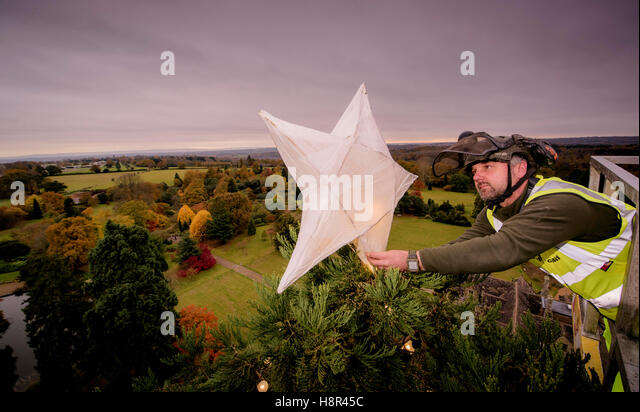 Wakehurst place, West Sussex, UK. 15th November, 2016.Stephen Robinson places the star at the top of the tree.From - Stock Image