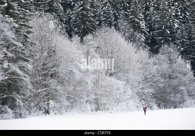 Jogging through a beautiful snowy winter landscape. - Stock-Bilder