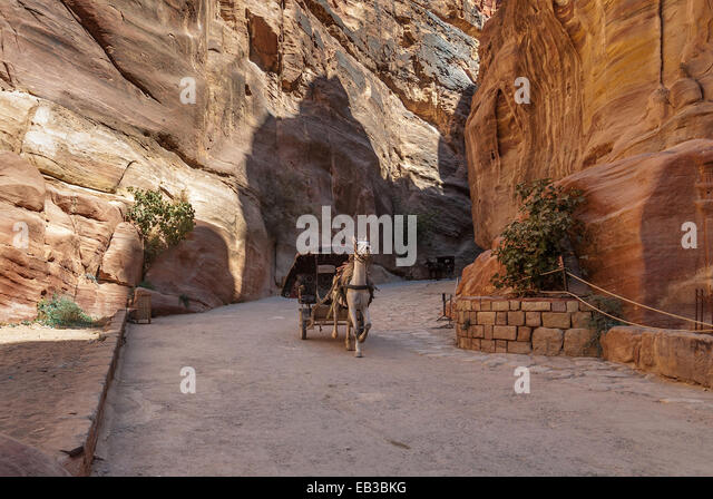 Jordan, Ma'an, Um Sayhun, Petra, Horse carriage ferries tourist - Stock Image