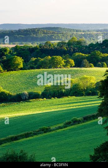 Mixed countryside at Newlands Corner, Surrey, UK - Stock Image