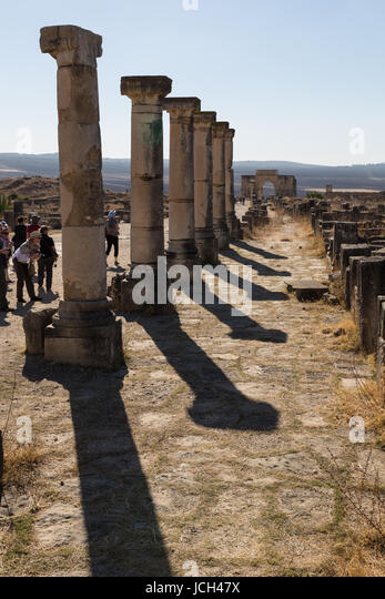 A line of Roman columns cast stark shadows in the Roman city of Volubilis, Morocco - Stock Image