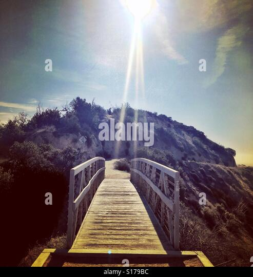 Griffith Park, Los Angeles - Stock-Bilder