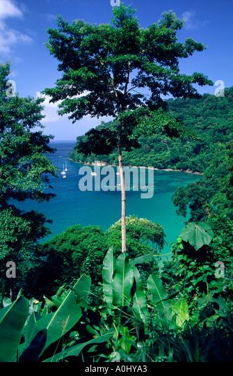 Tobago Charlotteville Pirat s bay sailing ships - Stock Image