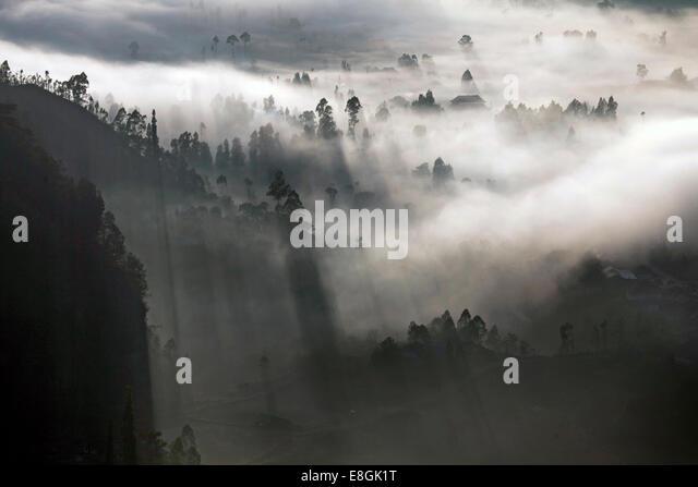 Indonesia, Bali, Kintamani, Morning fog - Stock Image