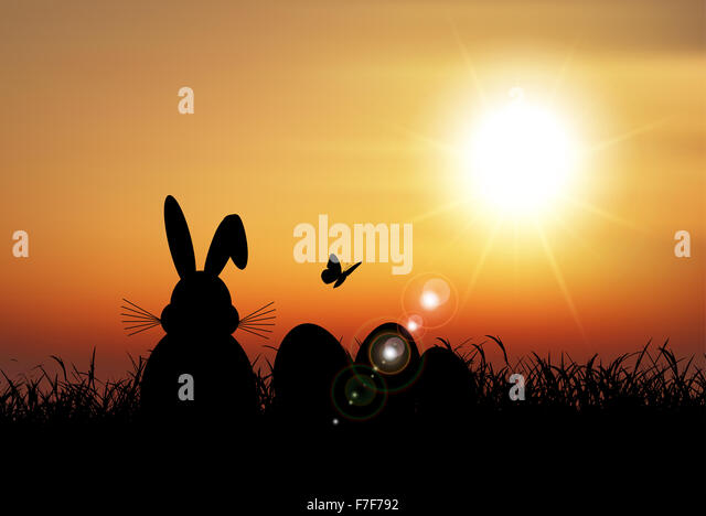 Silhouette of the Easter bunny sat in the grass against a sunset sky - Stock-Bilder