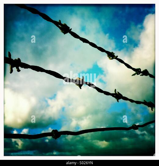 Barbed wire against sky - Stock Image