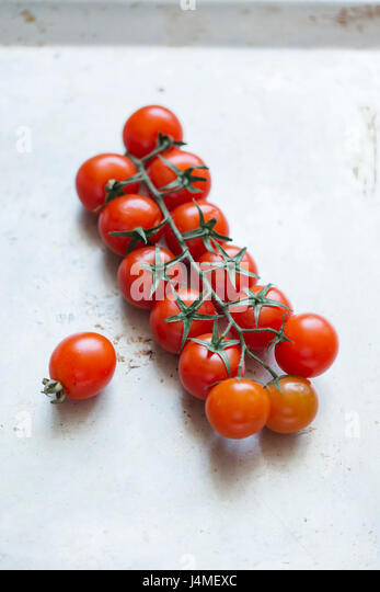Tomatoes on vine - Stock-Bilder
