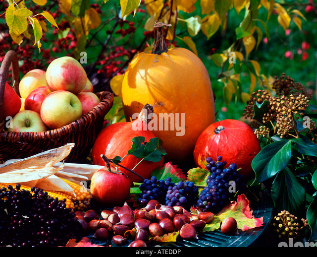 Autumnal still life - Stock Image