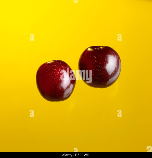 two plums on bright yellow background - Stock Image