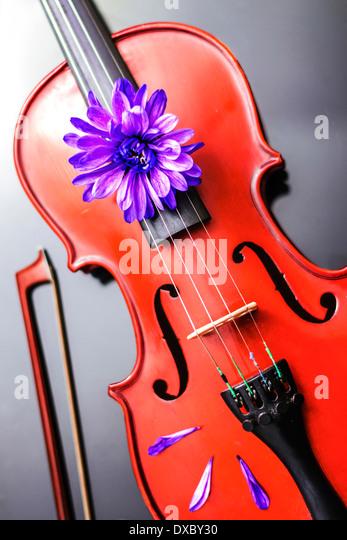 Artistic Poetic Violin - Stock Image