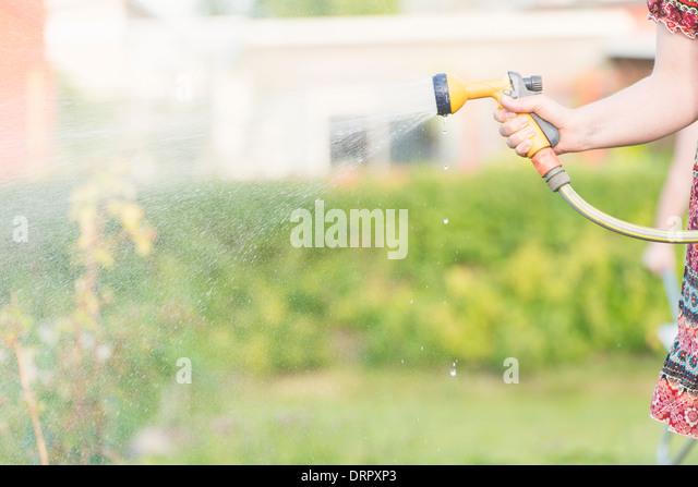 Lifestyle summer scene. Woman watering garden plants with sprinkler. - Stock Image